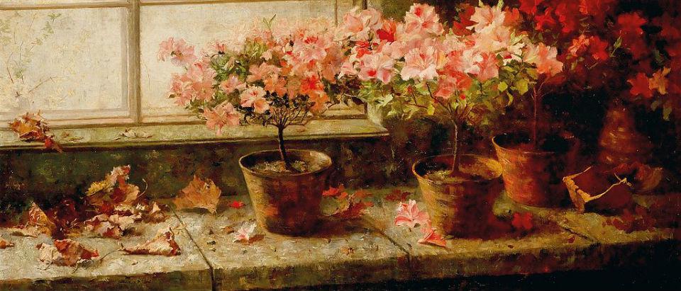 Marie_Egner__Flowering_Azaleas.jpg