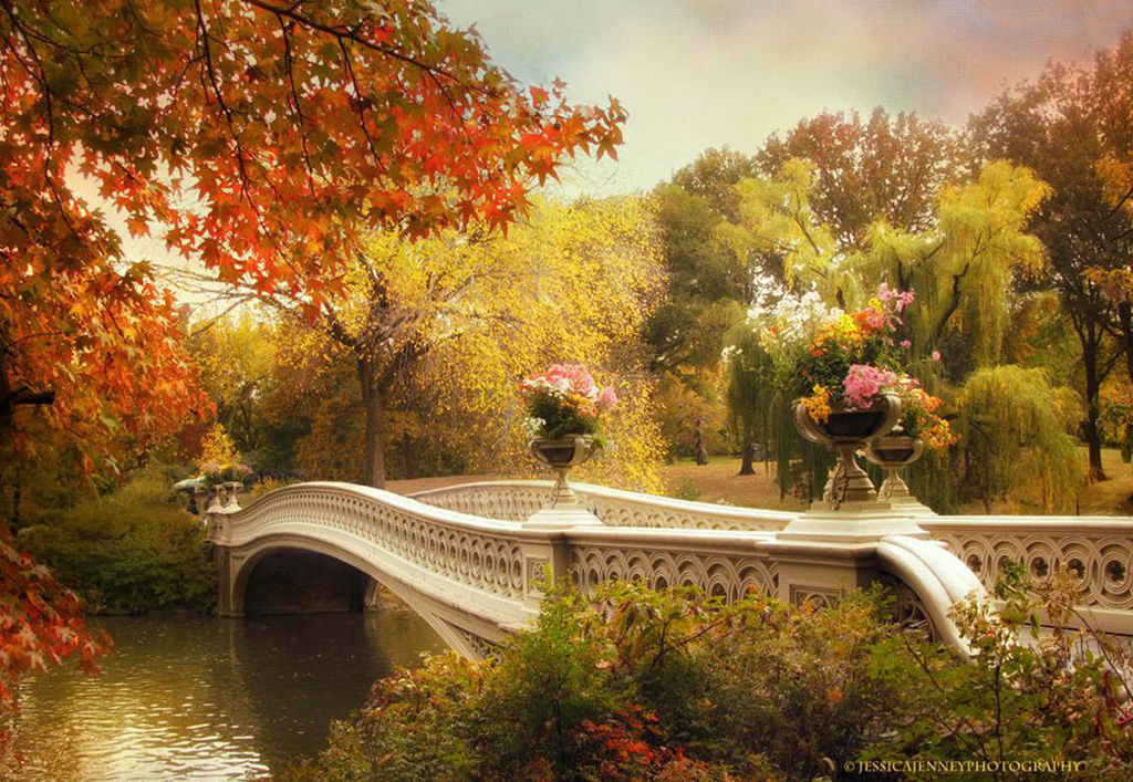 Jessica-Jenney--Bow-Bridge-Crossing.jpg