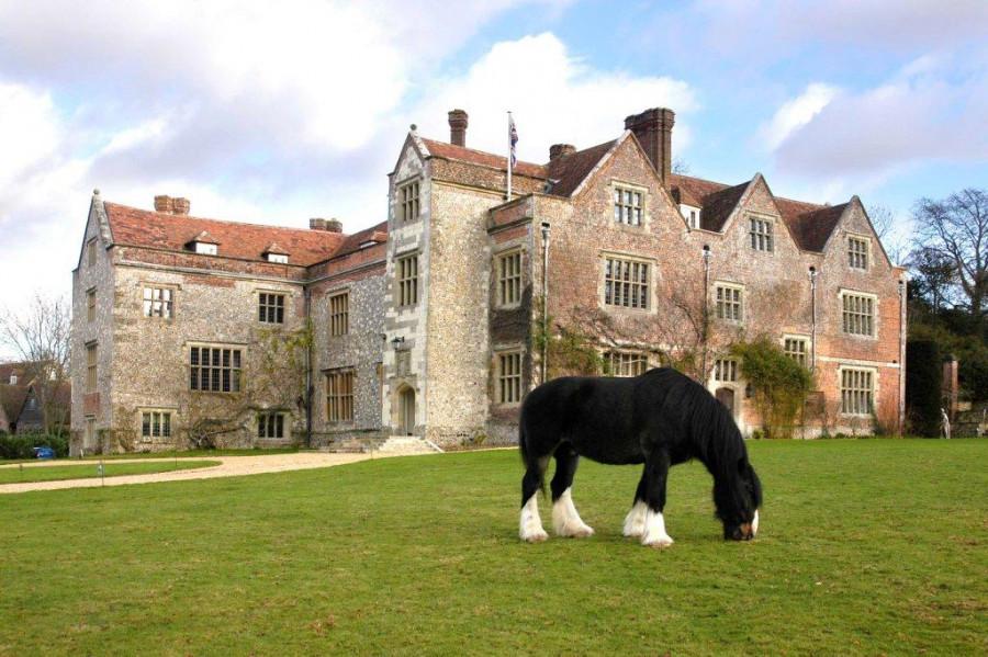 chawton-house-shire-horse.jpg